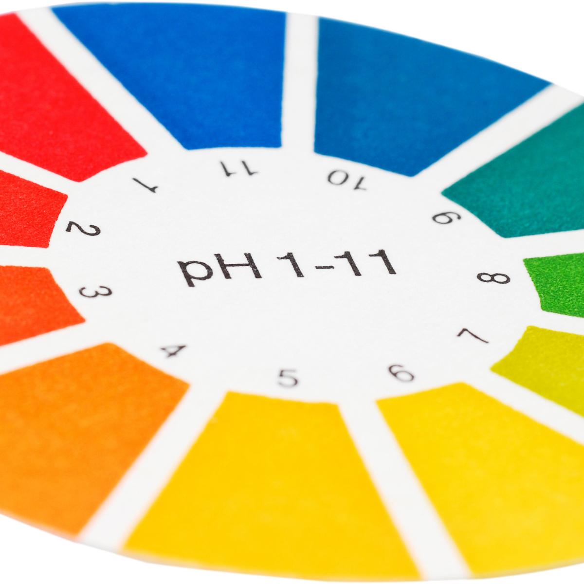 Sýrustig líkamans / pH gildi